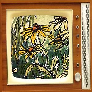 Daisies on TV