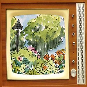 garden sketch on TV