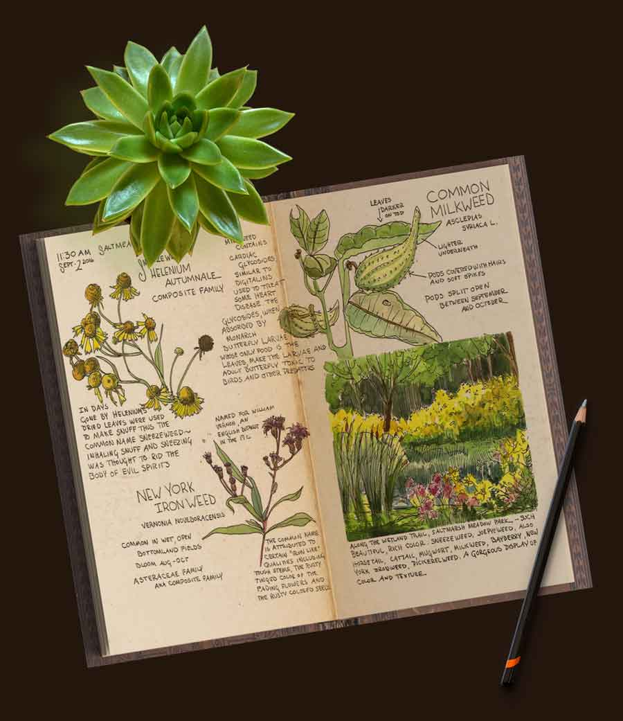 Nature-Journal-Jan-Blencowe-1