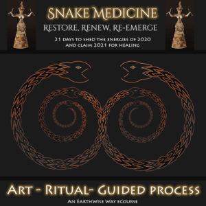 Snake Medicine Graphic