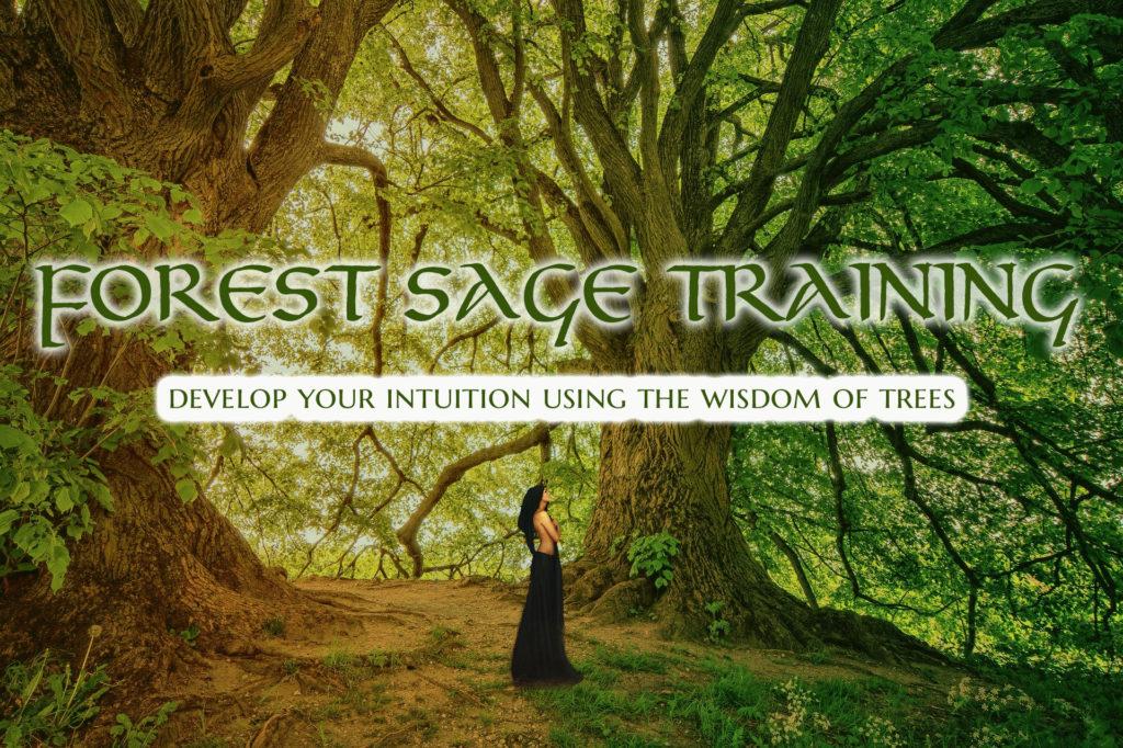 Forest Sage Training Banner